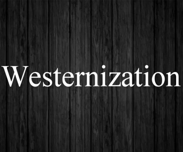 westernisation in india essay